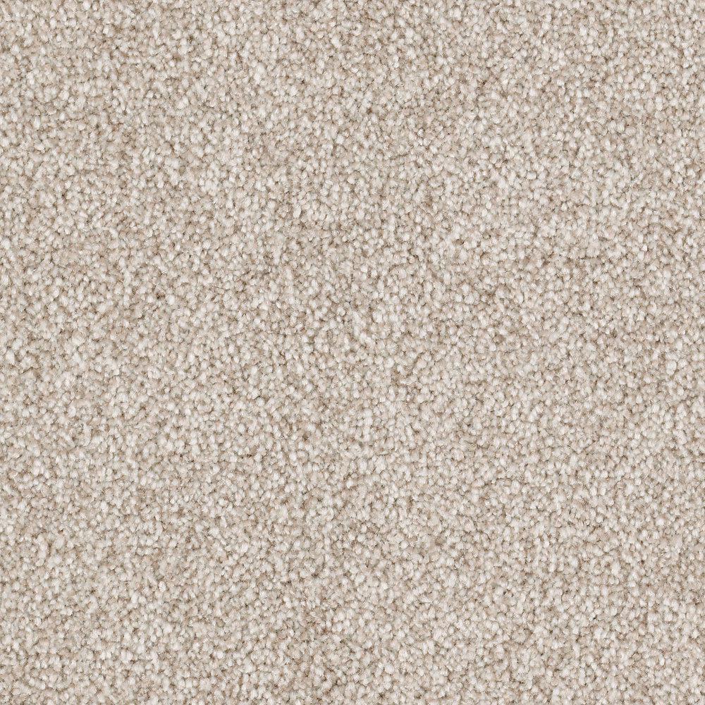 Silver Mane II - Color Rustic Texture 12 ft. Carpet