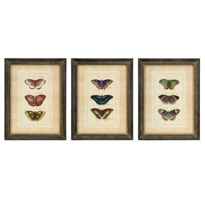 Butterfly Framed Collection Wall Art (Set of 3)