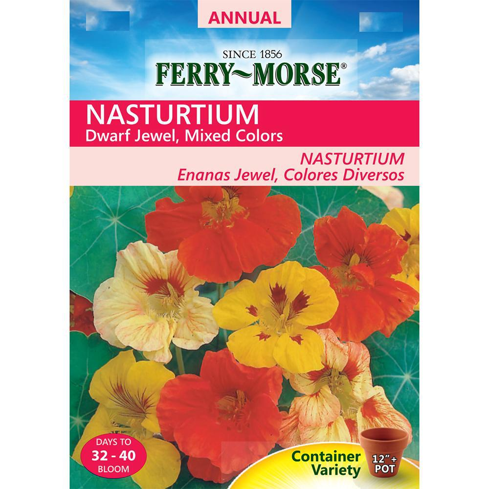 Nasturtium Jewel Mixed Colors Seed