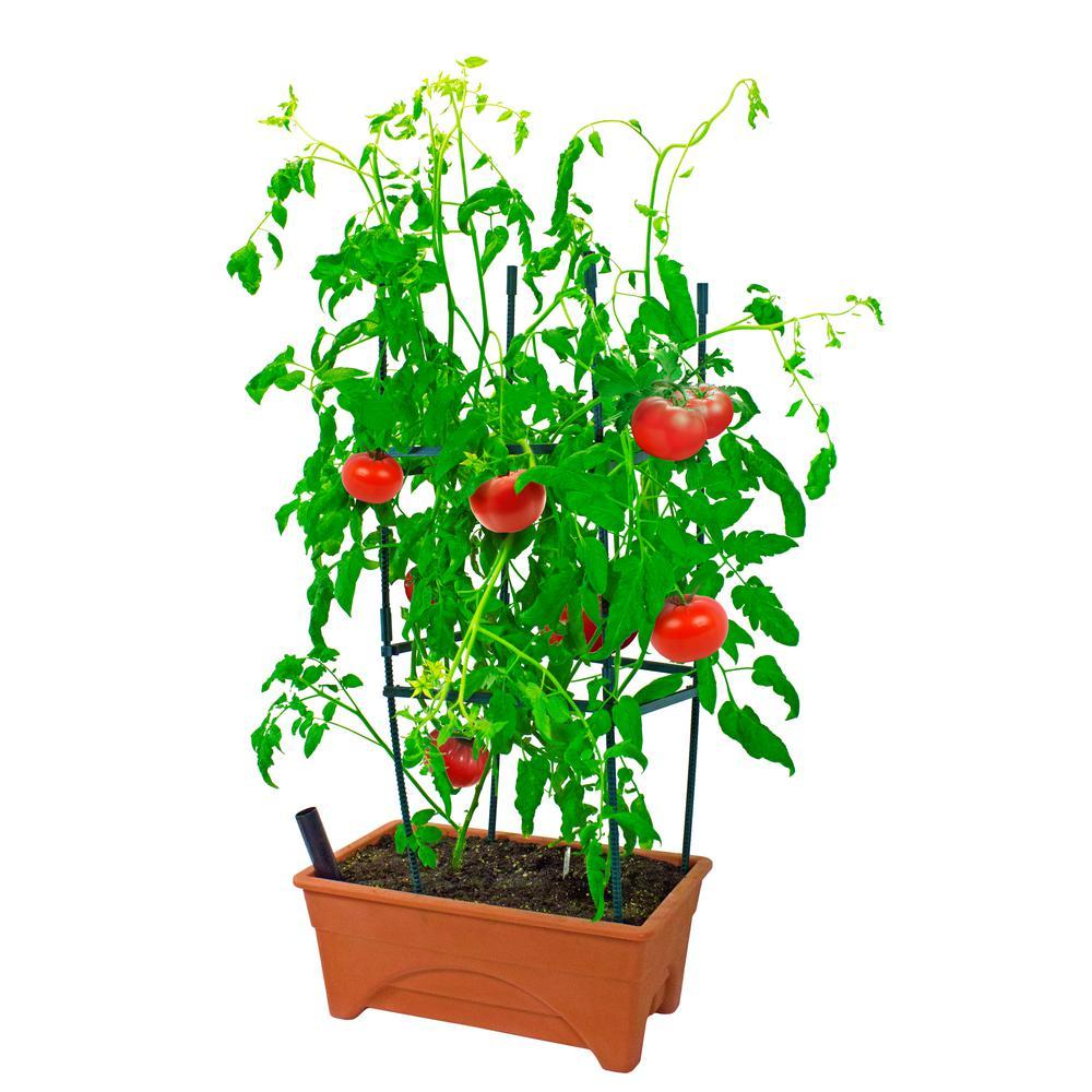 Viagrow 10 In Plastic Tomato Raised Garden Bed Kit