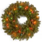 24 in. Norwood Fir Artificial Christmas Wreath with Multi-Color Lights