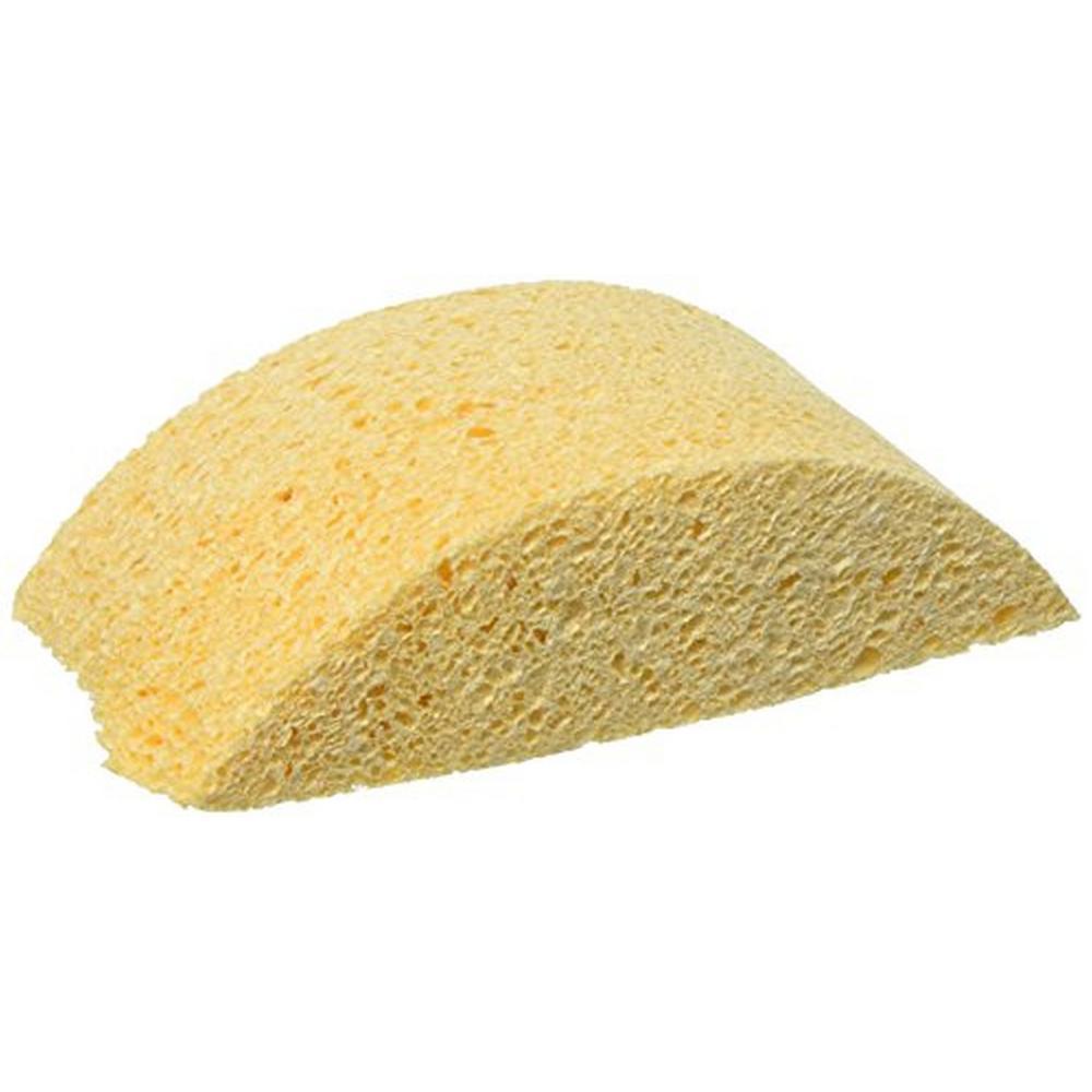 Tutle Back Sponge