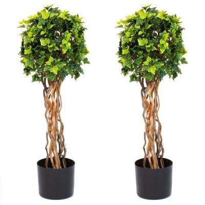 30 in. English Ivy Single Ball Topiary Tree (2-Pack)