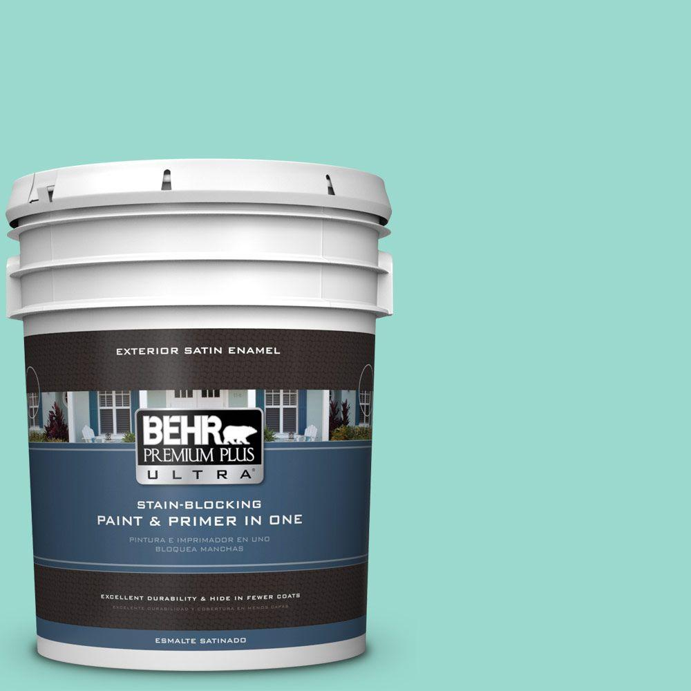 BEHR Premium Plus Ultra 5-gal. #P440-3 Fish Pond Satin Enamel Exterior Paint, Greens