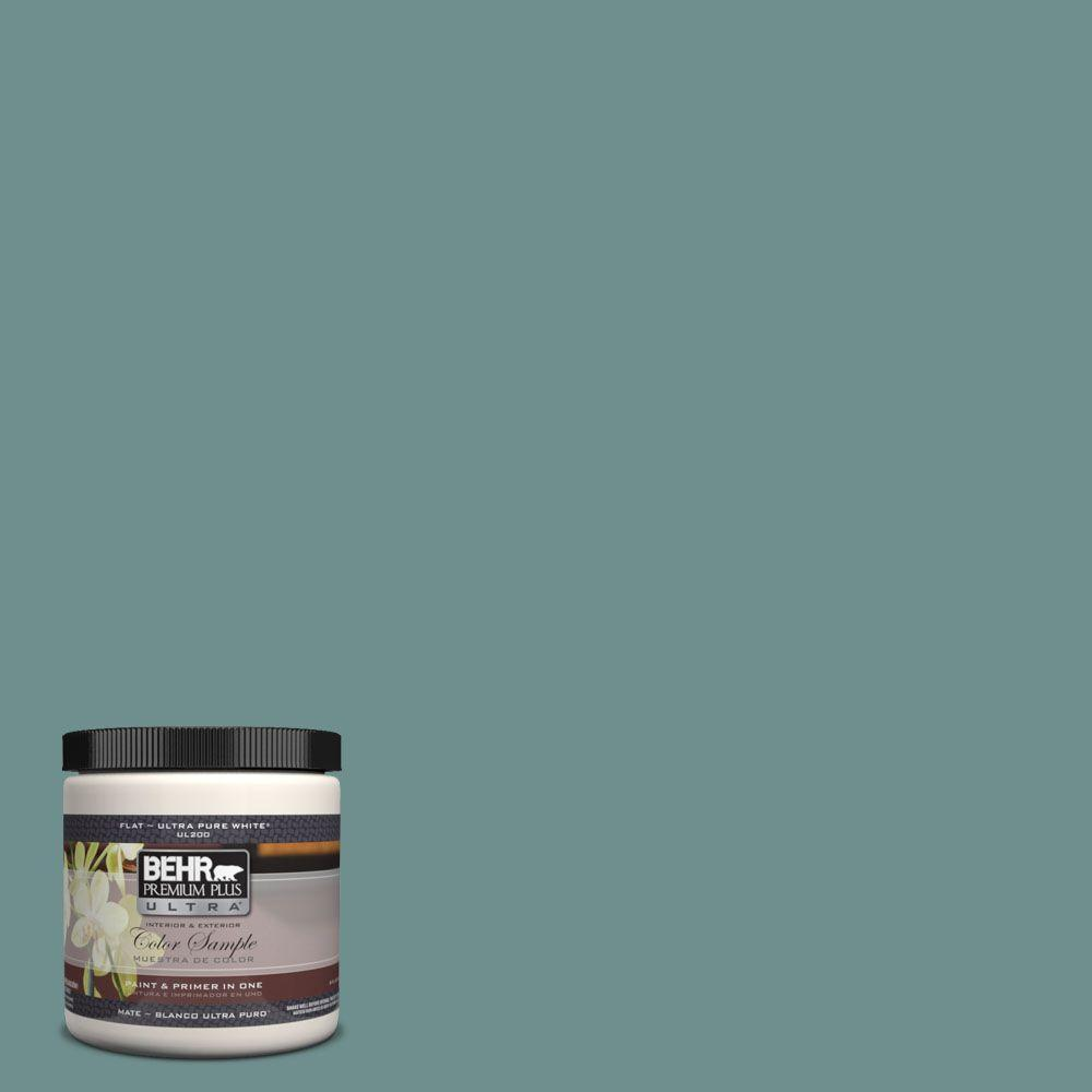 BEHR Premium Plus Ultra 8 oz. #UL220-19 Dragonfly Flat Interior/Exterior Paint and Primer in One Sample