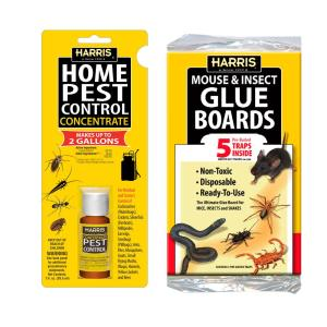Compare-N-Save 8 oz  Indoor and Outdoor Insect Control-75365 - The