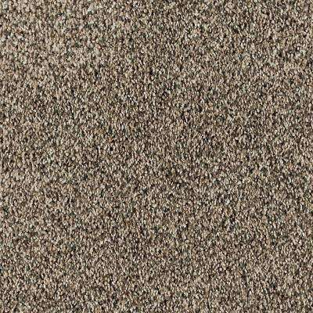 Briarmoor II - Color Flintstone Texture 12 ft. Carpet