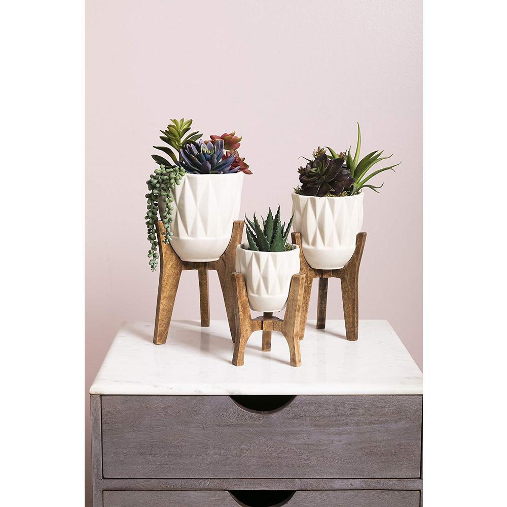 undefined Ella Elaine Amara Vases on Wood Stands (Set of 3)