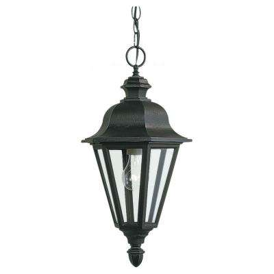 Brentwood 1-Light Black Outdoor Pendant