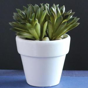 4 in. Artificial Spring Succulent in Pot