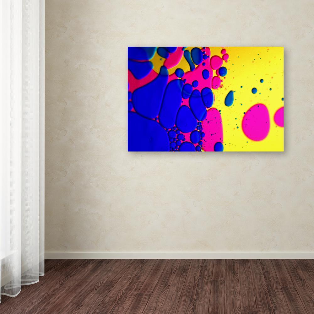 Trademark Fine Art 22 in. x 32 in. ''Colour Fun IV''
