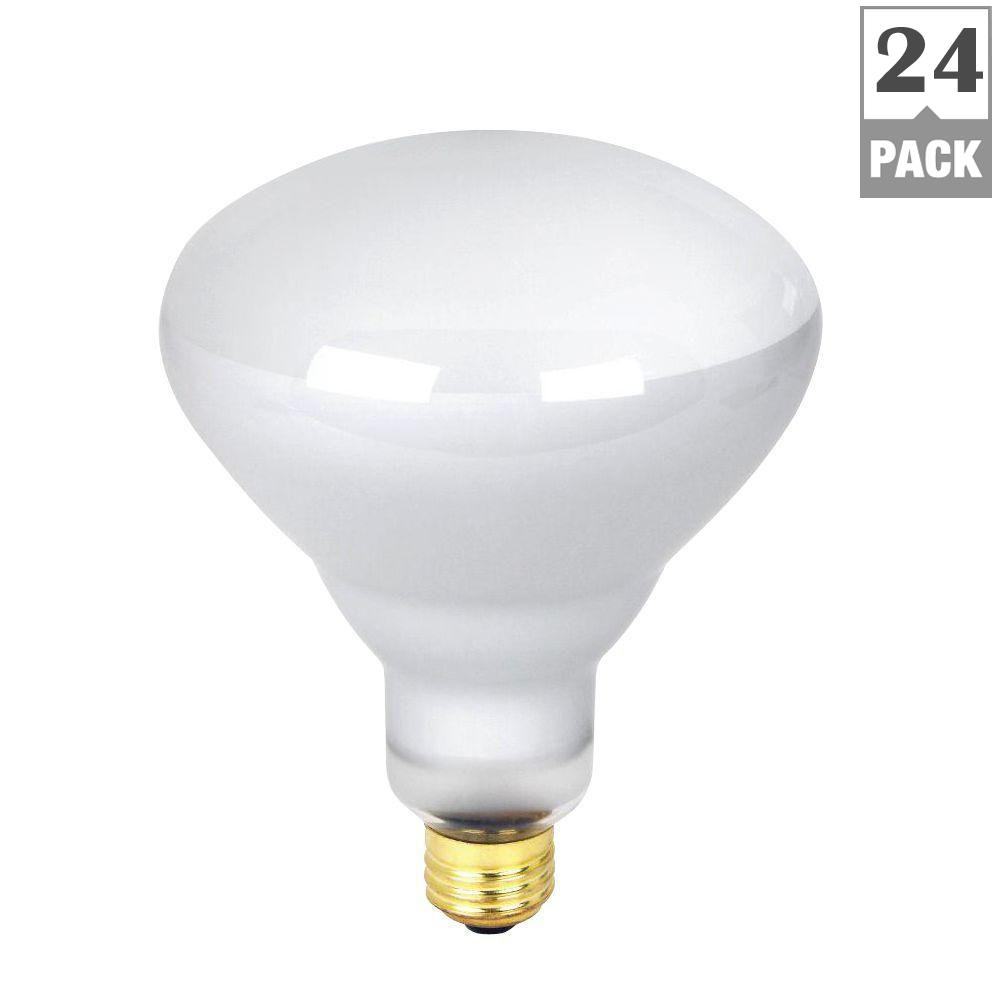 Feit Electric 300-Watt Incandescent R40 Pool and Spa Flood Light Bulb (24-Pack)