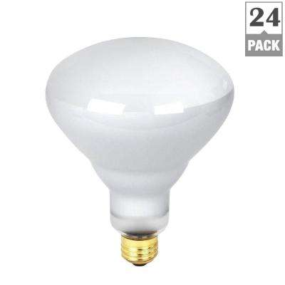 300-Watt Incandescent R40 Pool and Spa Flood Light Bulb (24-Pack)