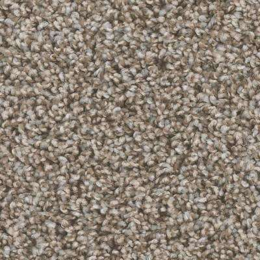 Montrose - Color Sonic Texture 12 ft. Carpet