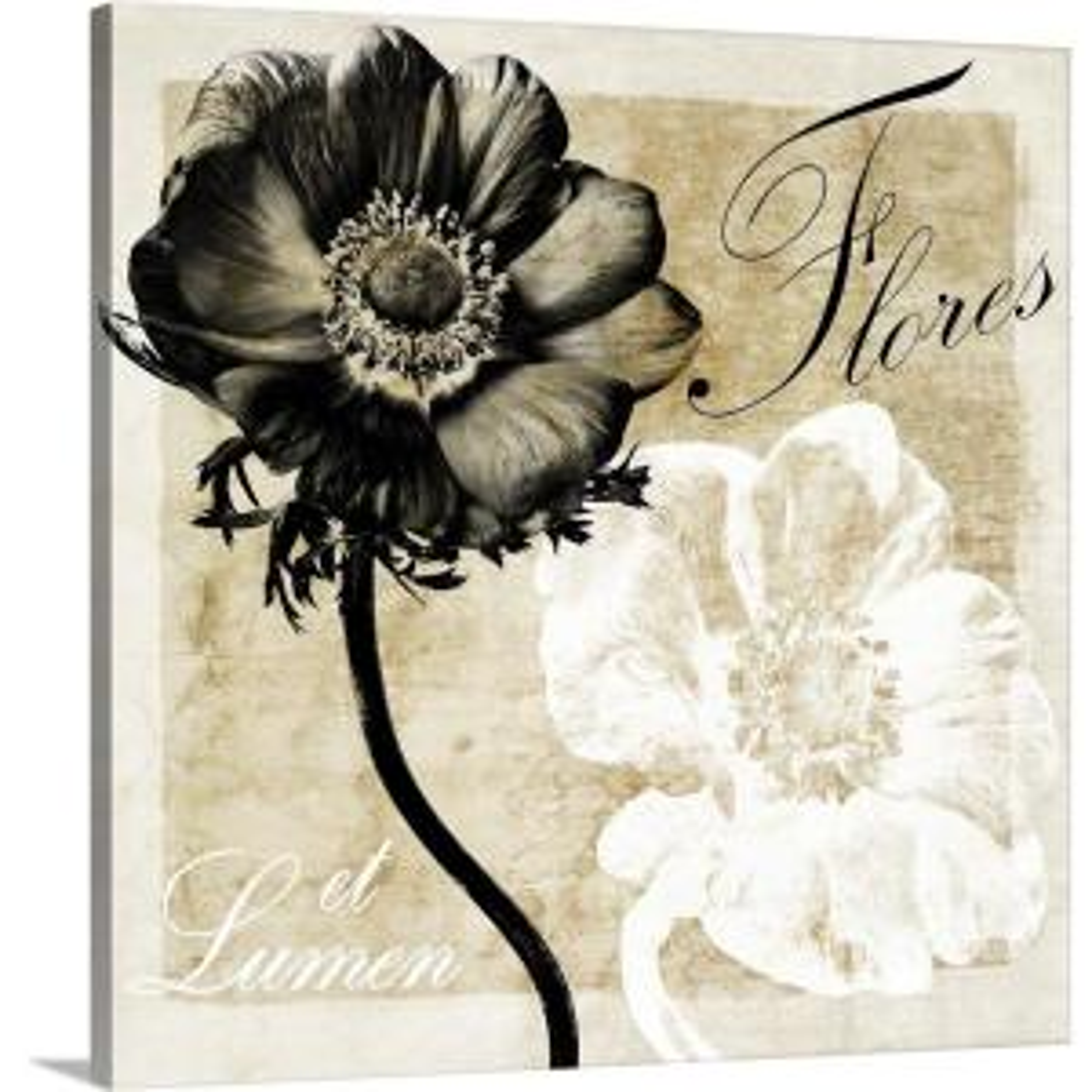 """Flowers And Light"" by Christine Zalewski Canvas Wall Art"
