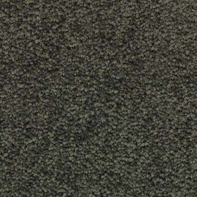 Unblemished II-Color Willow Textured 12 ft. Carpet