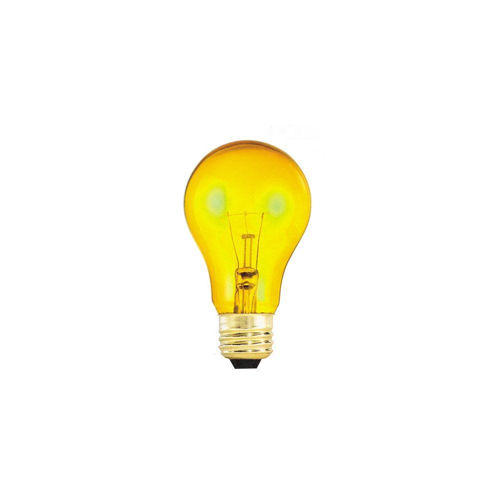 Bulbrite 25-Watt Incandescent A19 Light Bulb (25-Pack)