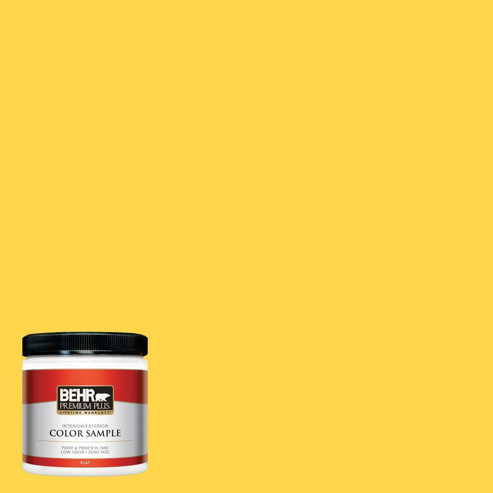 8 oz. #370B-6 Vibrant Interior/Exterior Paint Sample