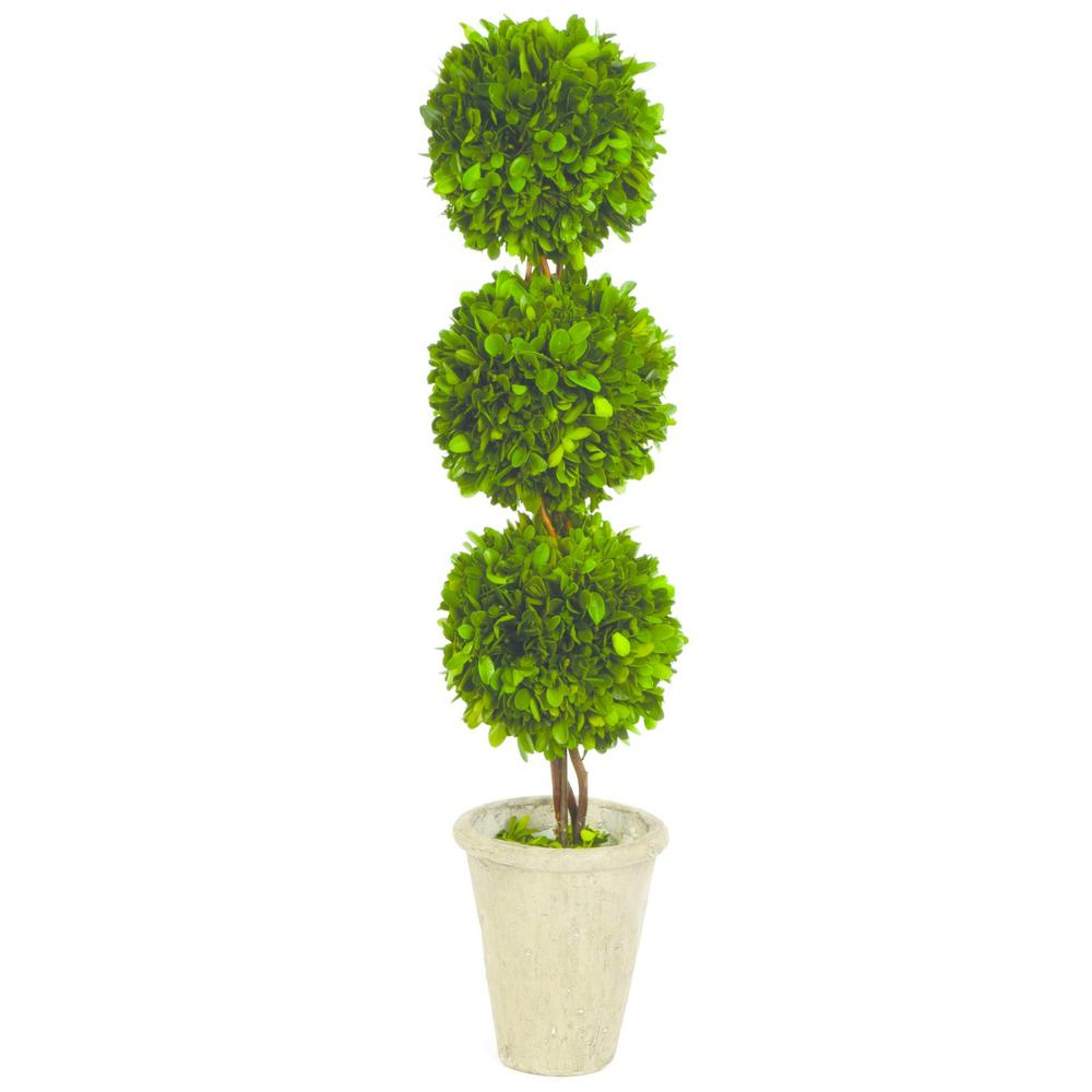 Boxwood Collection 24 in. Preserved Boxwood Triple Ball Topiary in Pot