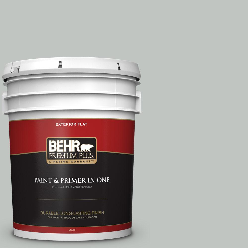 5 gal. #PPU25-14 Engagement Silver Flat Exterior Paint