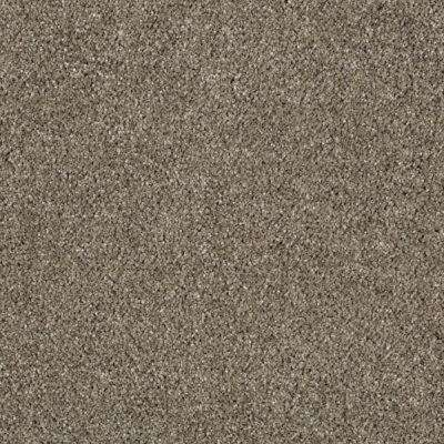 Carpet Sample - Pagliuca II - Color Mineral Brown Texture 8 in. x 8 in.