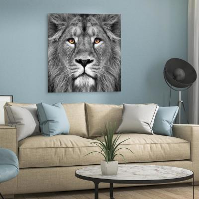 "38 in. x 38 in. ""King of the Jungle Lion"" Frameless Free Floating Tempered Glass Panel Graphic Art"