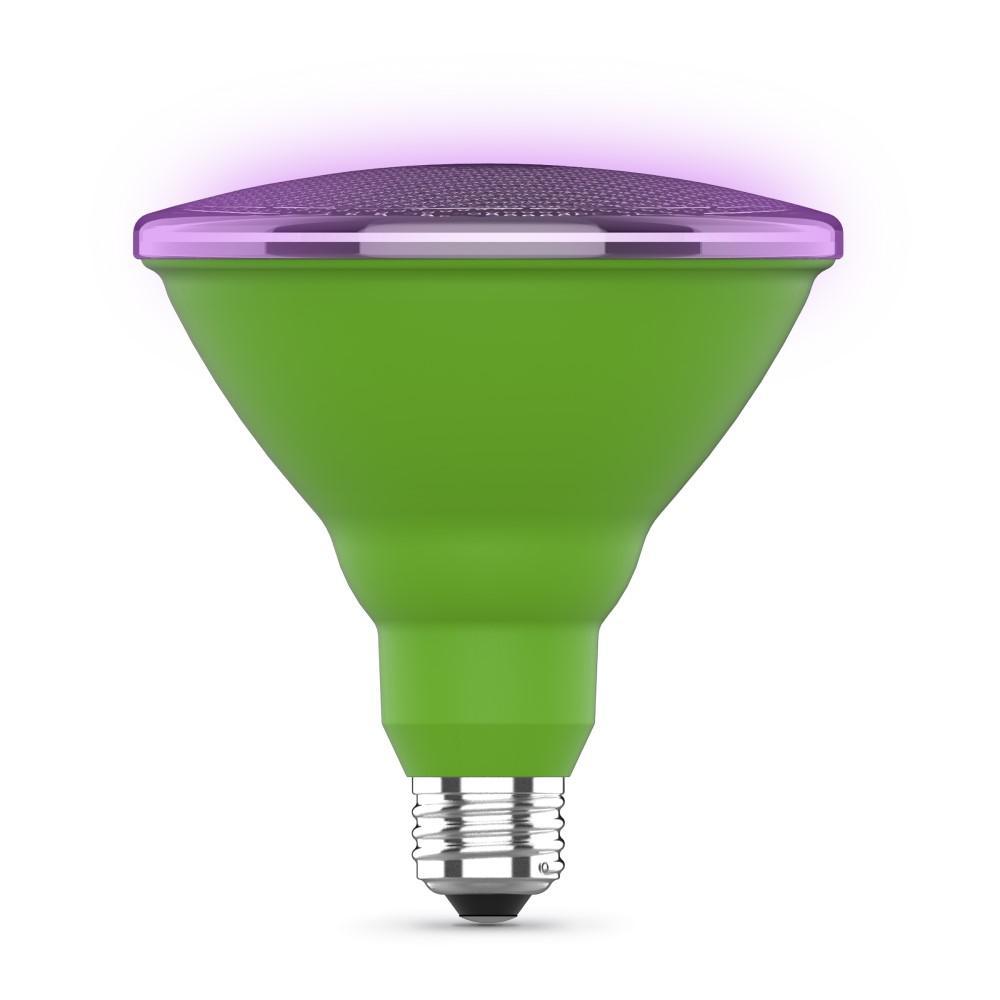 16-Watt Equivalent PAR38 Medium E26 Base Indoor and Outdoor Full Spectrum Plant Grow LED Light Bulb (1-Bulb)
