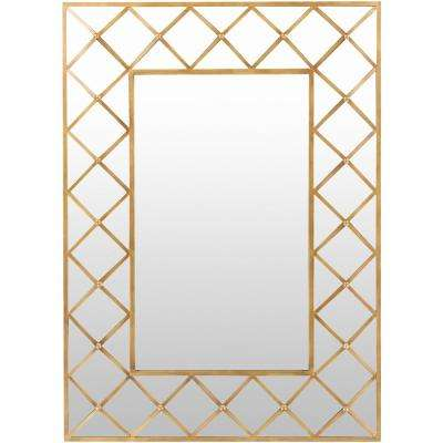 Letzia 40 in. x 55 in. Contemporary Framed Mirror