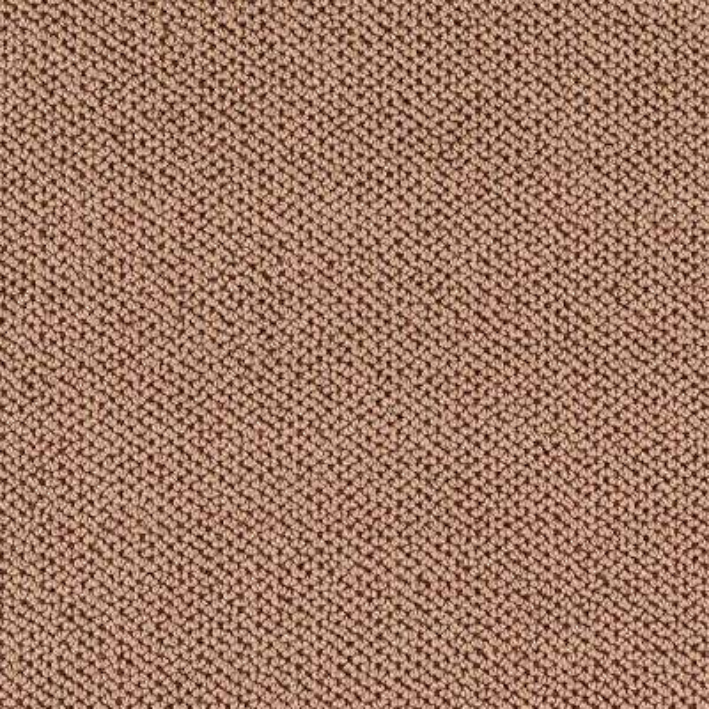 Carpet Sample - Priority - Color Amber Dawn Loop 8 in x 8 in