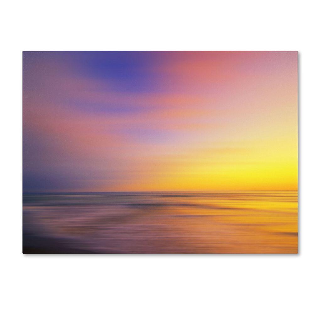 14 in. x 19 in. Metallic Sunset Canvas Art