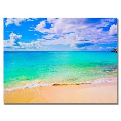 24 in. x 32 in. Maho Beach Canvas Art