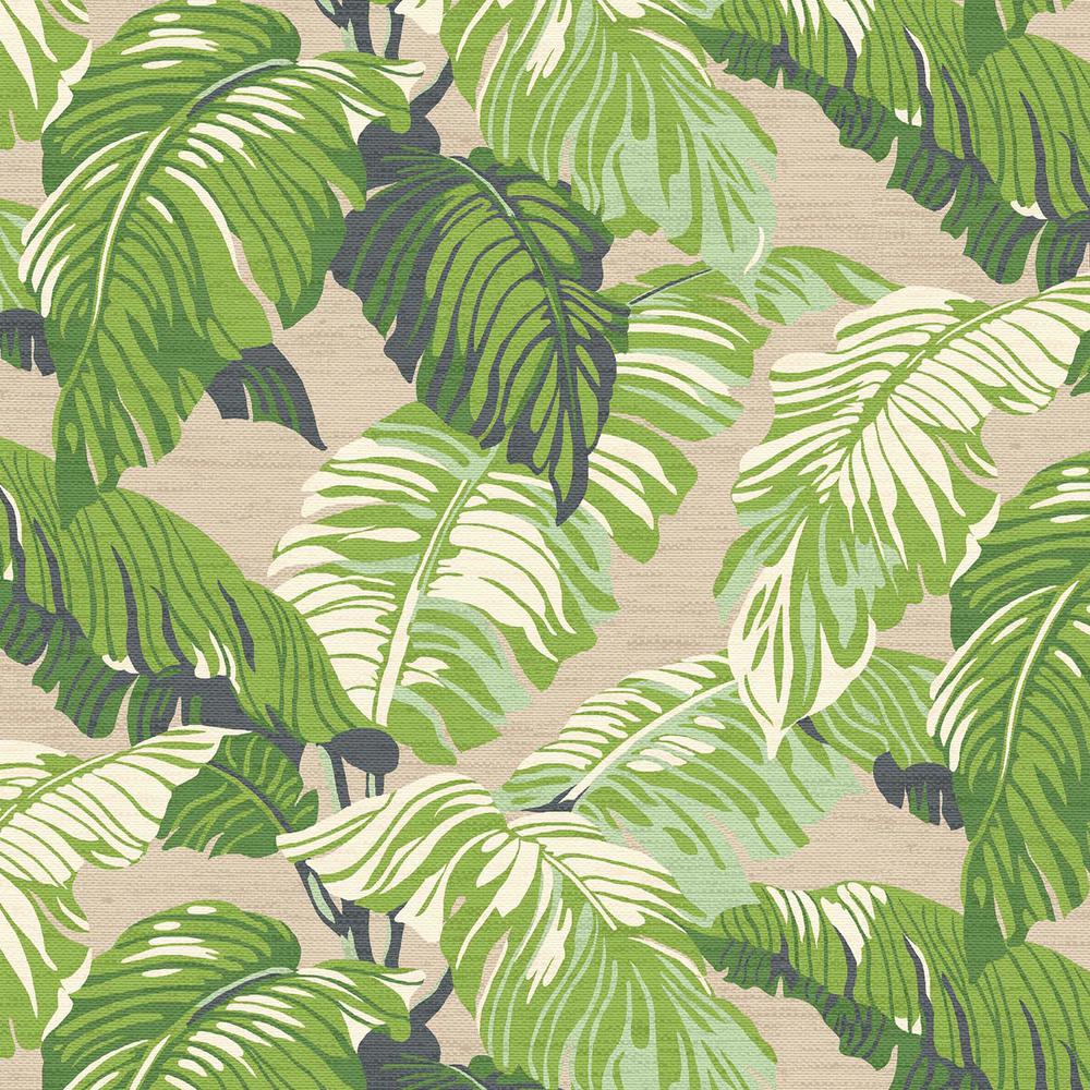 21.5 x 20 Outdoor Dining Chair Cushion in Standard Fern Tropical