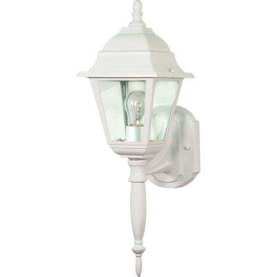 1-Light Outdoor White Wall Lantern with Clear Seed Glass