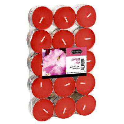 Sweet Pea Tealight Candles (Set of 60)