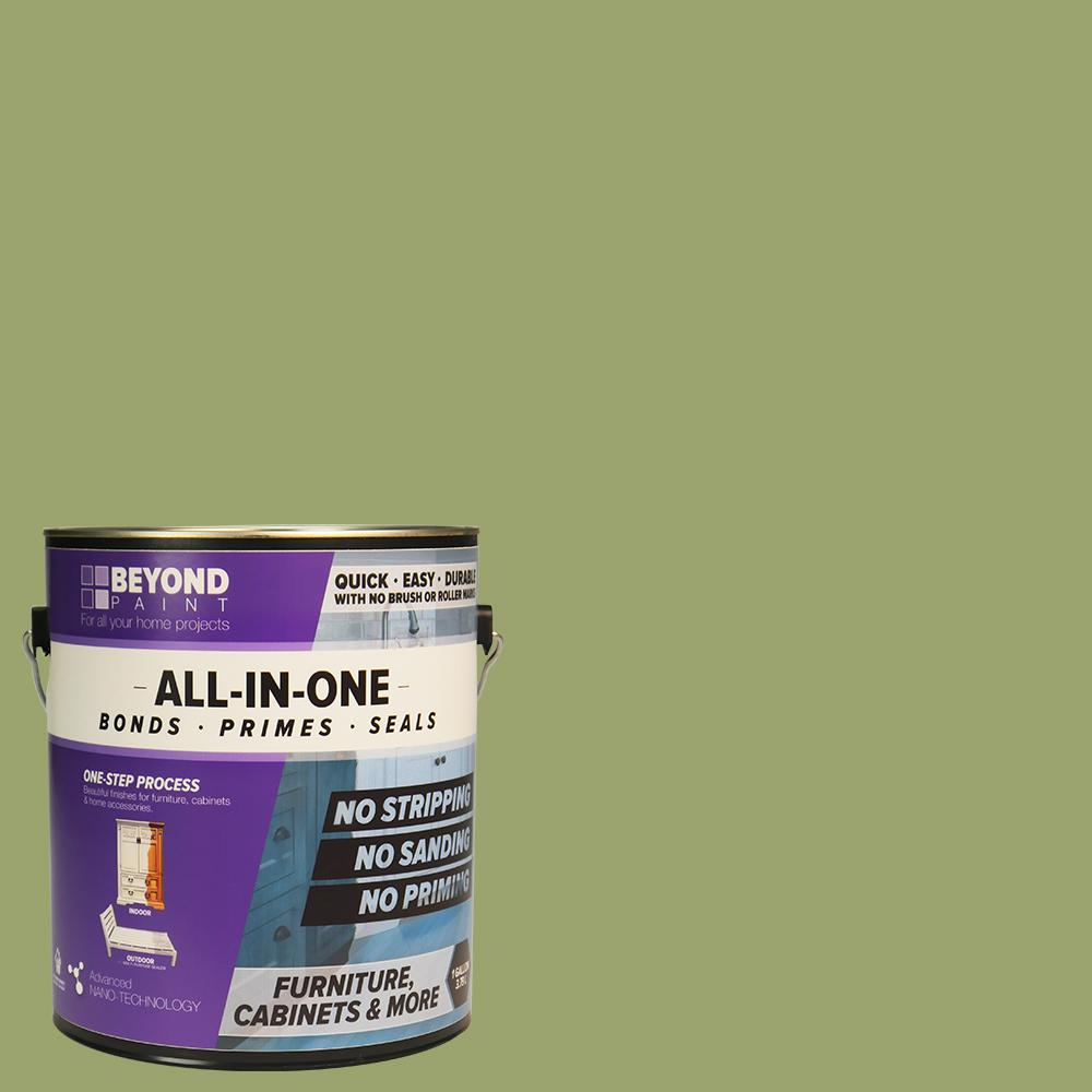 Beyond Paint 1 Gal Sage Furniture Cabinets And More