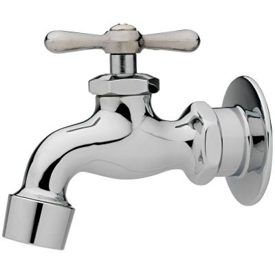Single-Handle Kitchen Faucet in Chrome