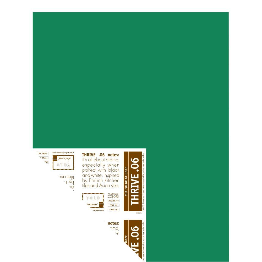 YOLO Colorhouse 12 in. x 16 in. Thrive .06 Pre-Painted Big Chip Sample