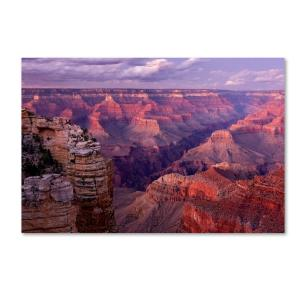 Trademark Fine Art 16 In X 24 In Grand Canyon Near Mather Point By Mike Jones Photo Floater Frame Nature Wall Art Ali17823 C1624g The Home Depot