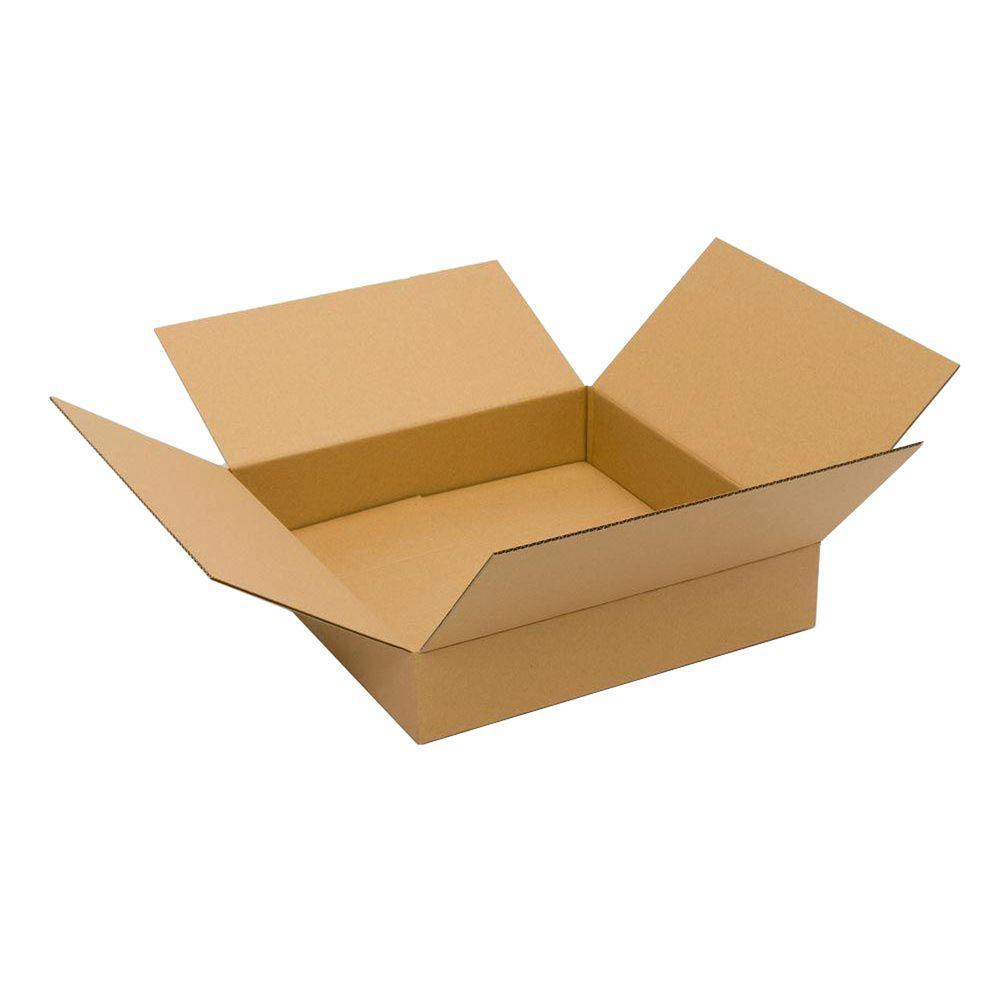 Pratt Retail Specialties 20 in. L x 20 in. W x 4 in. D Box (10-Pack)