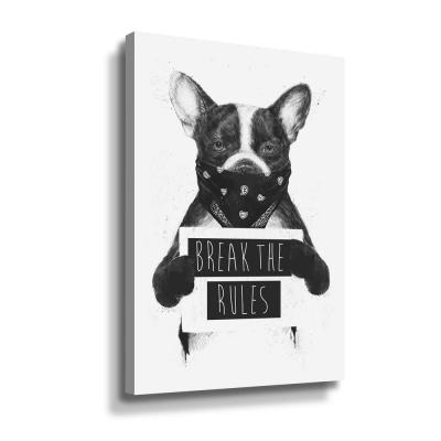 'Rebel Dog' by  Balazs Solti Canvas Wall Art