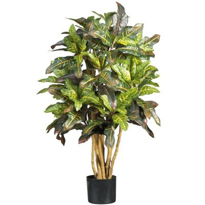 3 ft. Croton Silk Tree