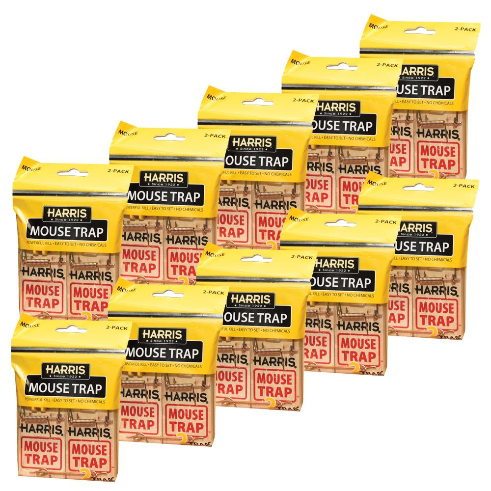 Mouse Snap Trap (20-Pack)