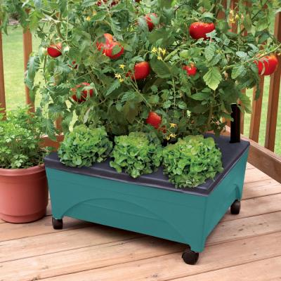 24.5 in. x 20.5 in. Patio Raised Garden Bed Grow Box Kit with Watering System and Casters in Aquamarine