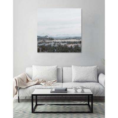 "20 in. x 20 in. ""Snow Squared"" by Oliver Gal Printed Framed Canvas Wall Art"