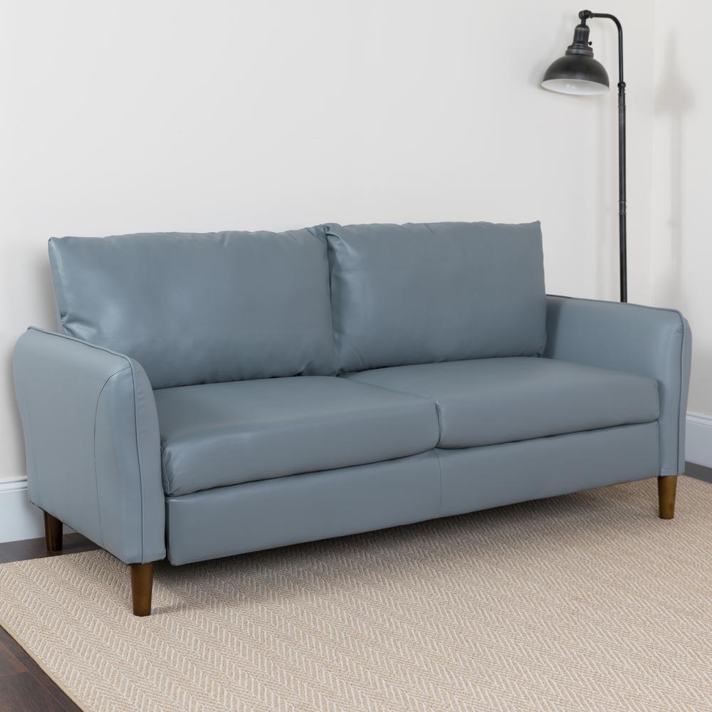 Gray Colored Living Room Sofa