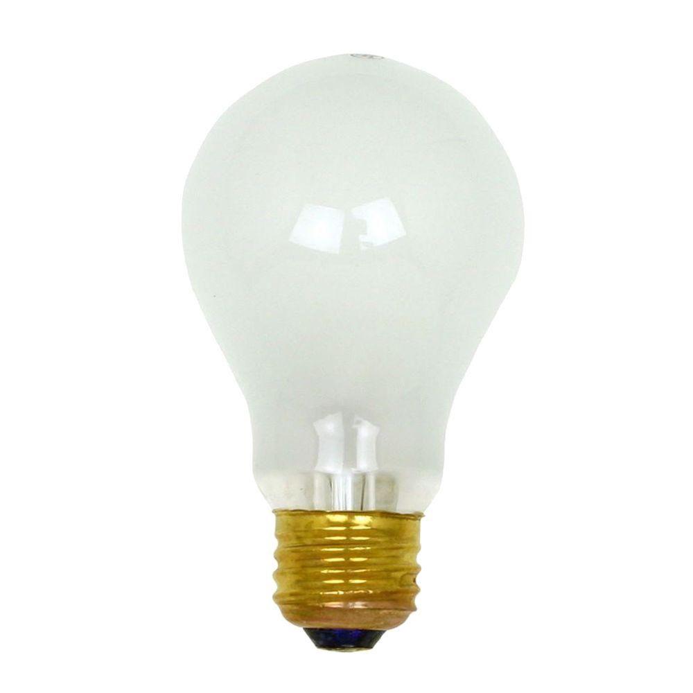 Bulbrite 100-Watt Incandescent A19 Light Bulb (10-Pack)