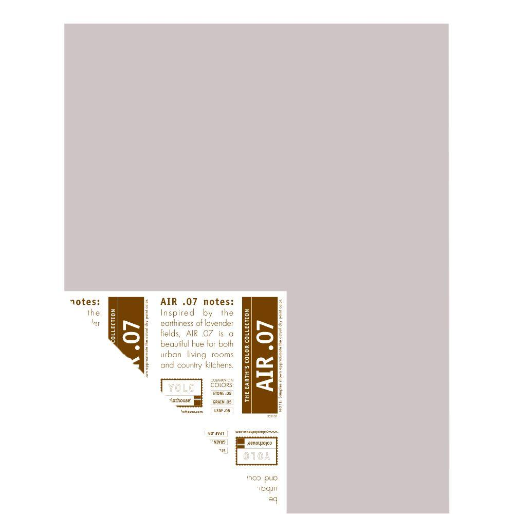 YOLO Colorhouse 12 in. x 16 in. Air .07 Pre-Painted Big Chip Sample