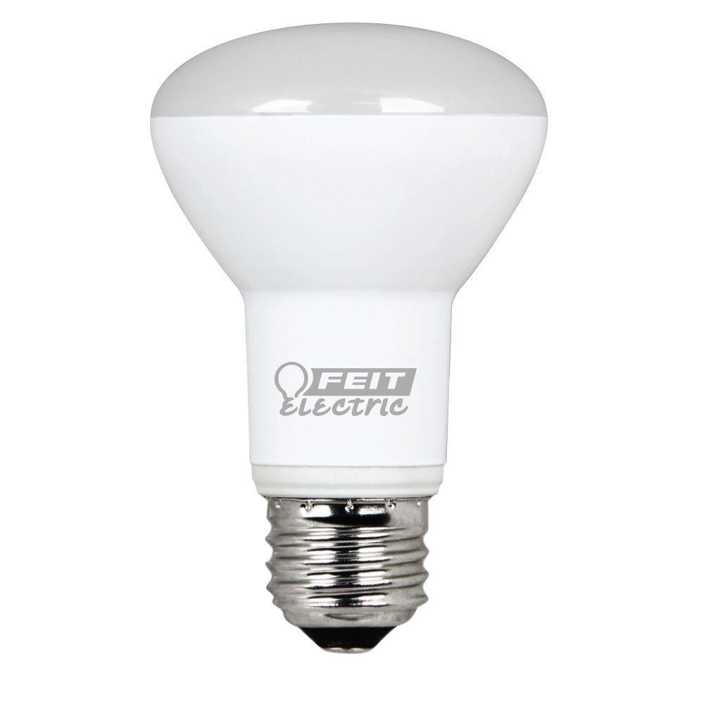 Feit Electric 40w Equivalent Soft White 2700k Ca10: EcoSmart 75W Equivalent Daylight BR40 Dimmable LED Light