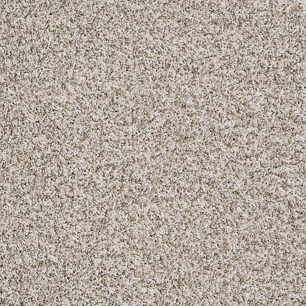 Home Decorators Collection Carpet Sample Eden Cove In