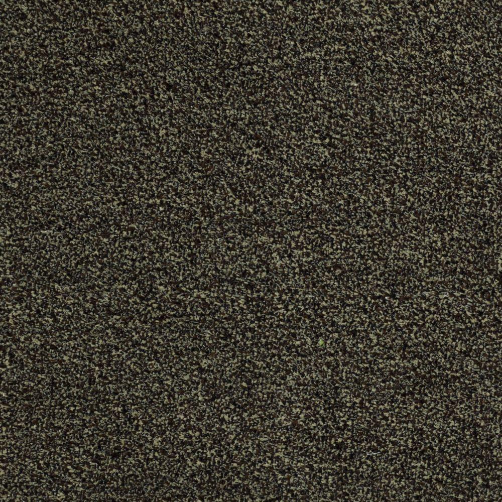 TrafficMASTER Toulon - Color Cobblestone 12 ft. Carpet-HDB6363711 ...